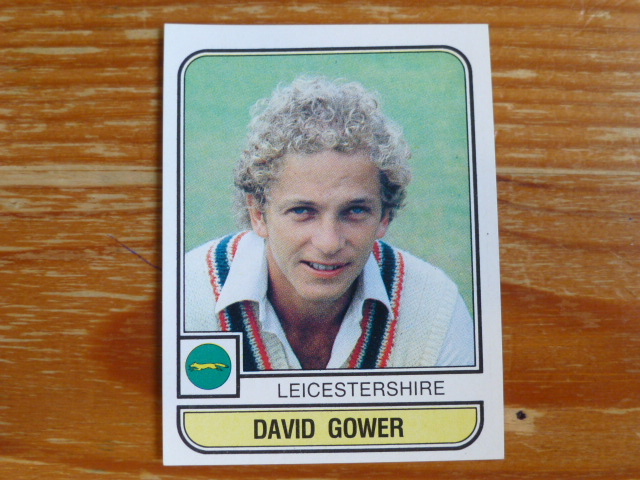 Panini World Of Cricket 83 - David Gower